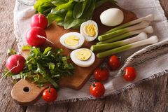 Preparation of the spring salad. Horizontal top view Royalty Free Stock Photo