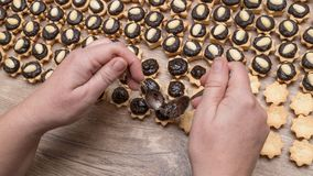 Preparation of sweet coconut cupcakes with cocoa filling and almonds. Female hands putting chocolate on the Christmas pastries stacked on a wooden table Stock Image
