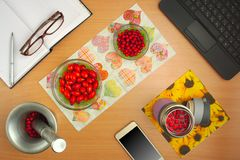 Preparation of tinctures dog rose and hawthorn, phone, glasses and book Royalty Free Stock Photography