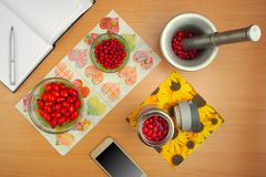 Preparation of tinctures dogrose and hawthorn, phone book Royalty Free Stock Photo