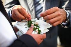 Preparation to exchange of wedding rings Stock Image