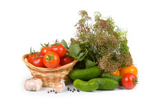 Preparation vegetables for salting Royalty Free Stock Image