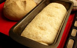 Preparation of yeast bread Stock Photography