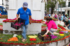 Preparations for the Flower Festival of Funchal, Madeira Island, Portugal Royalty Free Stock Photos