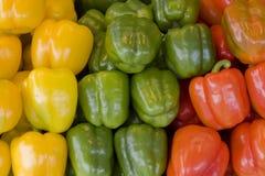 Preparato dei peperoni immagini stock libere da diritti