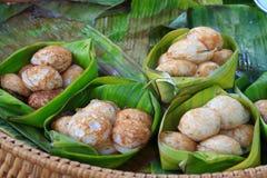 Preparato del latte di noce di cocco con polvere Fotografia Stock