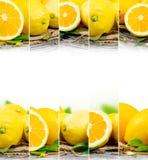 Preparato del limone Immagini Stock Libere da Diritti