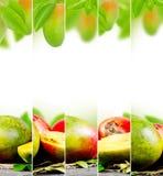 Preparato del mango Fotografia Stock