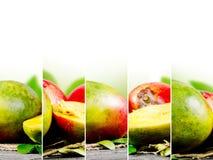 Preparato del mango Fotografie Stock Libere da Diritti