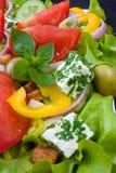 Preparato dell'insalata Immagine Stock