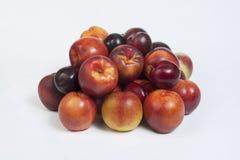 Preparato 1 della frutta Immagini Stock