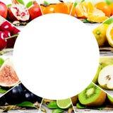 Preparato della frutta Immagine Stock
