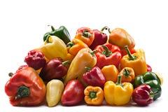 Preparato di verdure del pepe Immagini Stock