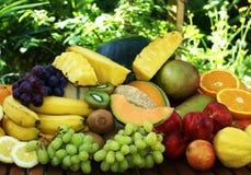 Preparato esotico della frutta Fotografia Stock Libera da Diritti