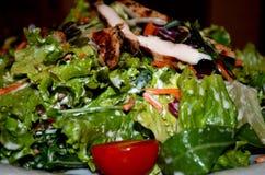 Preparato fresco dell'insalata con i semi ed il petto di pollo di zucca Fotografia Stock Libera da Diritti