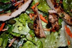 Preparato fresco dell'insalata con i semi ed il petto di pollo di zucca Immagine Stock Libera da Diritti