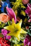 preparaty kwiaty Zdjęcia Stock
