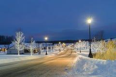 Preparazione degli alberi di Natale per il nuovo anno fotografia stock libera da diritti