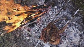 Preparazione dei gallinacei, cercante tema Cucinando un intero corpo del fagiano su un ferro infilza sopra un fuoco di accampamen video d archivio