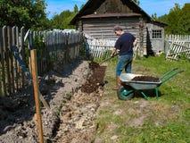 Preparazione dei letti per la piantatura dei lamponi La composta si applica come fertilizzante immagini stock libere da diritti