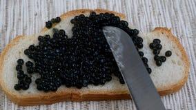 Preparazione dei panini con il caviale nero Il caviale nero dello storione è spalmato di coltello da cucina su una fetta di bianc video d archivio