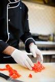 Preparazione del cuoco unico Fotografia Stock Libera da Diritti