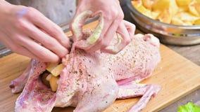 Preparazione del primo piano dell'anatra o dell'oca per cuocere Spruzzi la carcassa cruda con le spezie ed il sale Anatra del pia stock footage