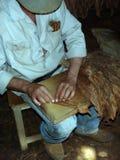Preparazione del sigaro Immagini Stock