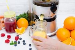 Preparazione del succo dalla frutta e dalle verdure fresche Immagine Stock