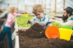 Preparazione del suolo bambino piccolo che prepara suolo per piantare suolo che prepara concetto preparazione del suolo della fam fotografia stock libera da diritti