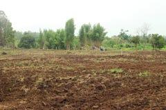 Preparazione del suolo prima della piantatura Immagini Stock Libere da Diritti