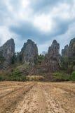 Preparazione dell'agricoltura della terra Fotografie Stock