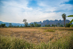 Preparazione dell'agricoltura della terra Fotografia Stock Libera da Diritti