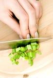 Preparazione dell'insalata fotografie stock libere da diritti