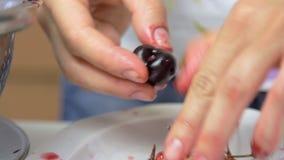 Preparazione della ciliegia mentre cucinando torta di formaggio stock footage