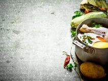 Preparazione della minestra di pollo fragrante con gli ortaggi freschi Fotografia Stock Libera da Diritti