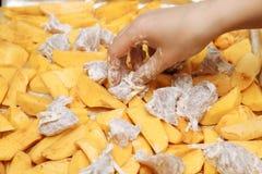 Preparazione delle patate crude con carne Immagini Stock Libere da Diritti