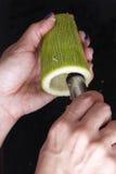 Preparazione dello zucchini Fotografia Stock