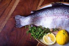 Preparazione di racconto, del salmone o della trota del pesce Ingredienti del piatto di pesce fotografia stock libera da diritti
