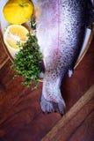 Preparazione di racconto, del salmone o della trota del pesce Ingredienti sui tum di legno immagine stock libera da diritti