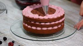 Preparazione facendo il dolce di cioccolato con le bacche La mano del ` s della donna decora il dolce stock footage