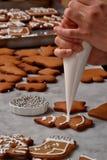 Preparazione fresca dei biscotti di natale Fotografie Stock Libere da Diritti