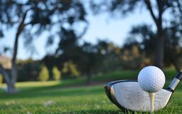 Preparazione guidare la sfera di golf Fotografie Stock