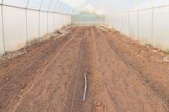 Preparazione per coltivazione Fotografie Stock Libere da Diritti