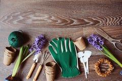 preparazioni della molla per la piantatura della vista superiore dei fiori Immagine Stock