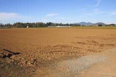 Preparazioni per i raccolti di piantatura Immagini Stock
