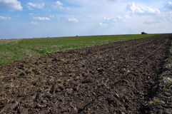 Prepare the area under sugar beet crop Royalty Free Stock Photos