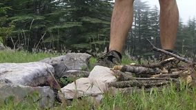 Prepare campfire, burning wood in the forrest stock video footage