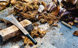 Prepare the compost pile using the coconut coir husk for grow th Stock Photography