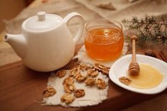 Prepare cookies saborosos Conceito de família Foto de Stock Royalty Free